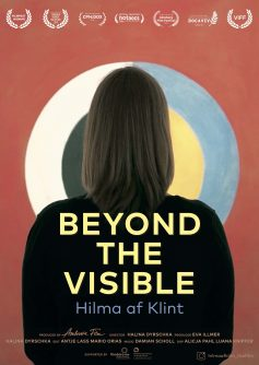 BEYOND THE VISIBLE poster