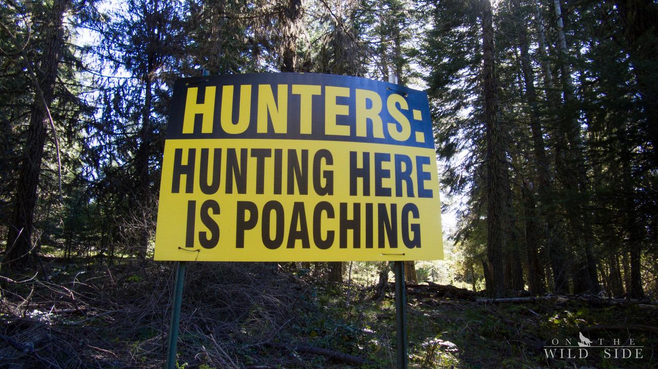 Gegen die Weltweite Jagd